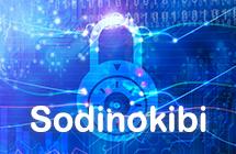 Sodinokibi ランサムウェアの復号化と削除